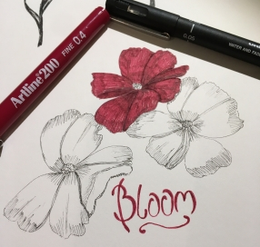 bloom-pre-card.jpg
