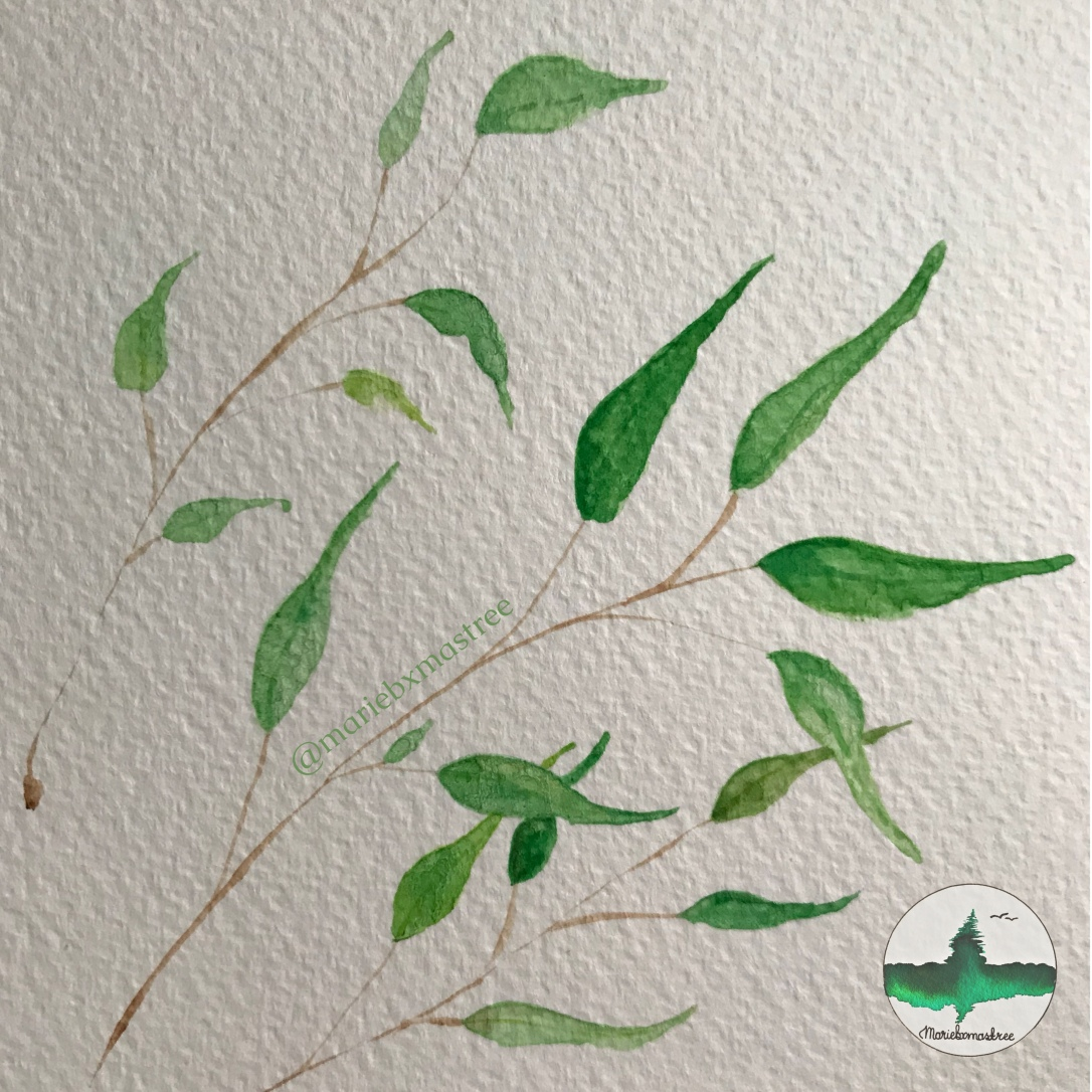Watercolor leaves. Watercolour painting. Artist: mariebxmastree